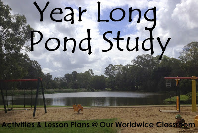 Year Long Pond Study