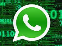 5 Fitur Gres Yang Sedang Dikembangkan Whatsapp Cek Disini