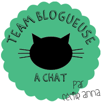 http://nailartiseasy.fr/team-blogueuse-chat/