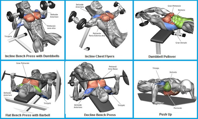 Best Way To Build Your Chest Without Weights
