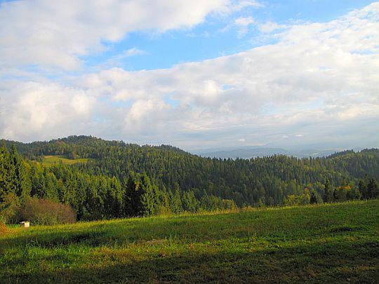 Przed Przełęczą Knurowską.
