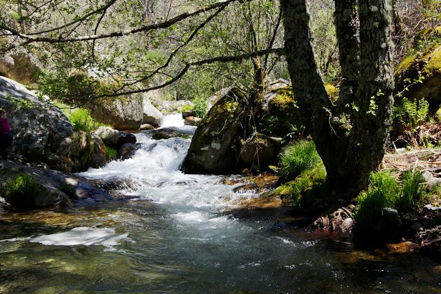 Un riachuelo en el valle del Ambroz