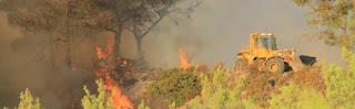 Απόφαση Αντιπεριφερειάρχη Δυτικού Τομέα για απαγόρευση κυκλοφορίας λόγω υψηλού κινδύνου πυρκαγιάς