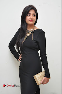 Actress Poonam Kaur Latest Pictures in Black Long Dress at Thikka Audio Launch  0025
