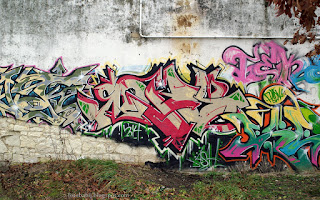 http://fotobabij.blogspot.com/2016/01/tapeta-graffiti-ulskowieszynska-puawy.html