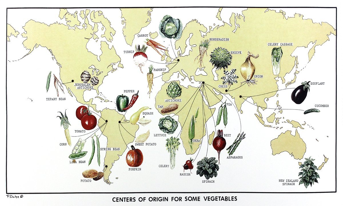 Centers of origin for some vegetables