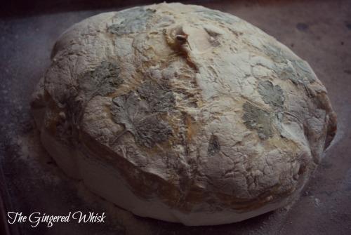 Roasted Garlic Sourdough