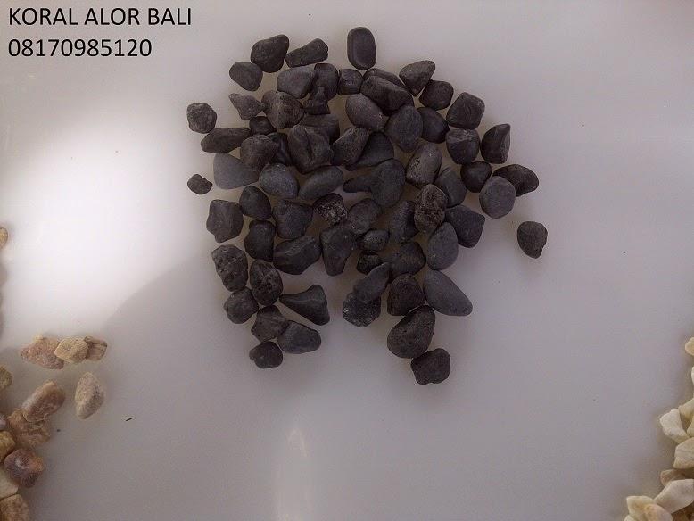Batu Alam Koral Pebble Lombokv