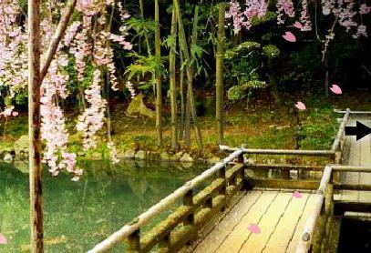 FreeRoomEscape Sakura Fes…