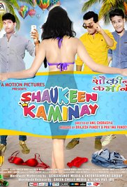 Shaukeen Kaminay (2016) 720p Untouched WEB HD – AVC – AAC – Team IcTv Exclusive 1GB