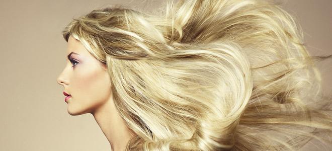τα νέα της γαλέρας  10 τροφές για υγιή και λαμπερά μαλλιά 66e907a5ec3
