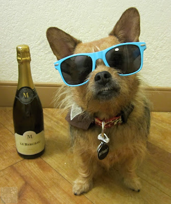 Jada with sunglasses and champagne