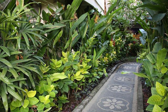 tropical%2Bgarden%2Bpath.jpg