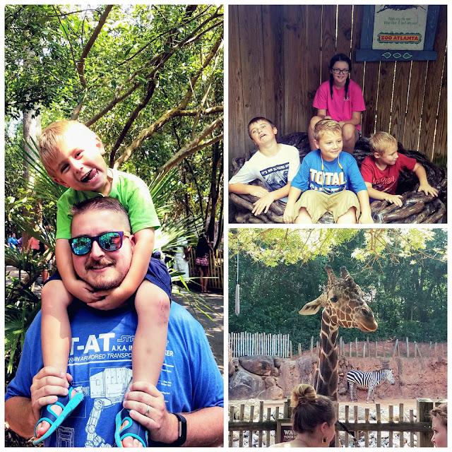 Atlanta Zoo Trip