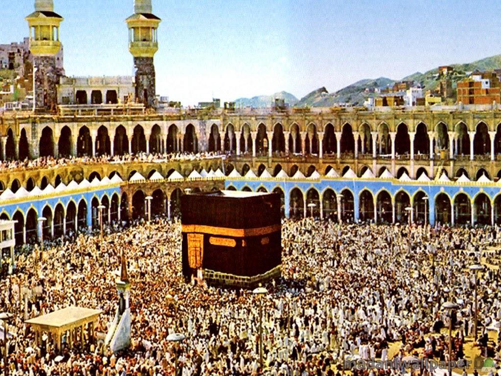 I Provide You Free Islamic Knowledge