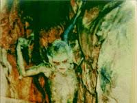 Perbedaan Jin Dengan Setan/Iblis ( Dunia Islam )
