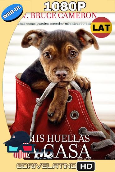 Mis Huellas a Casa (2019) WEB-DL 1080p Latino-Ingles MKV