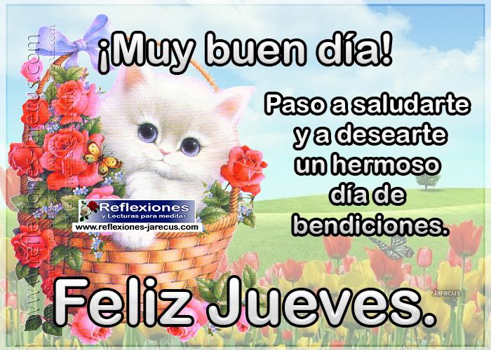 Muy buen día, paso a saludarte y a desearte un hermoso día de bendiciones. Feliz jueves.