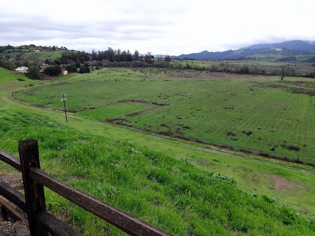 green hillsides