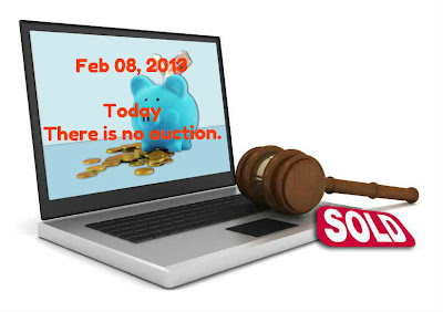 NO Auction on IRREPS on Feb 08, 2013