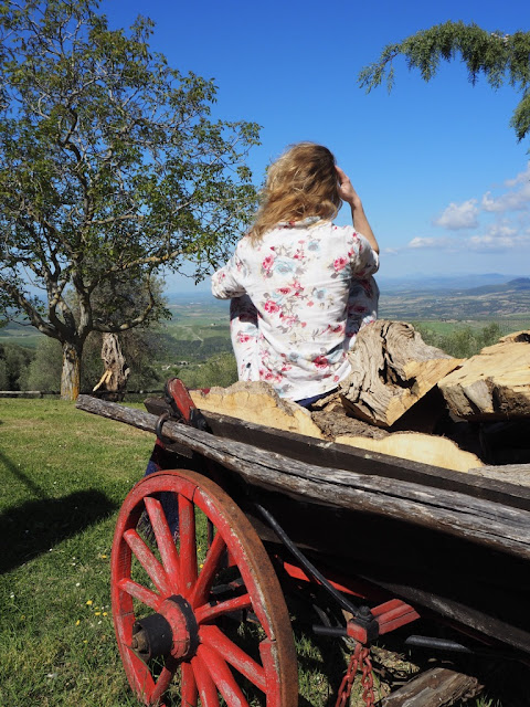 Ráno mezi toskánskými kopci, okolí Montalcino, dokonalý výhled