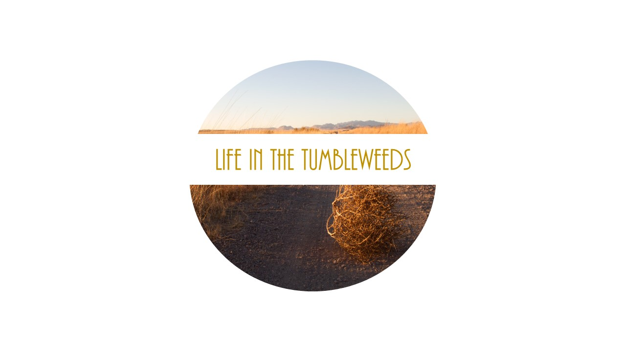 Life in the Tumbleweeds