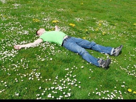 Tidur di Rumput Hijau