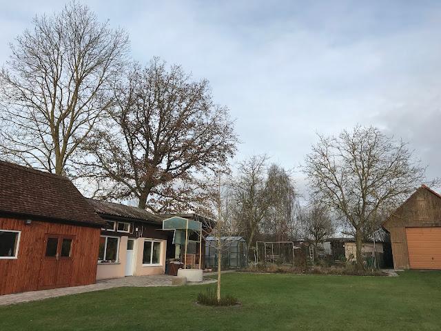 Landgarten mit Haselnußbaum im Winter