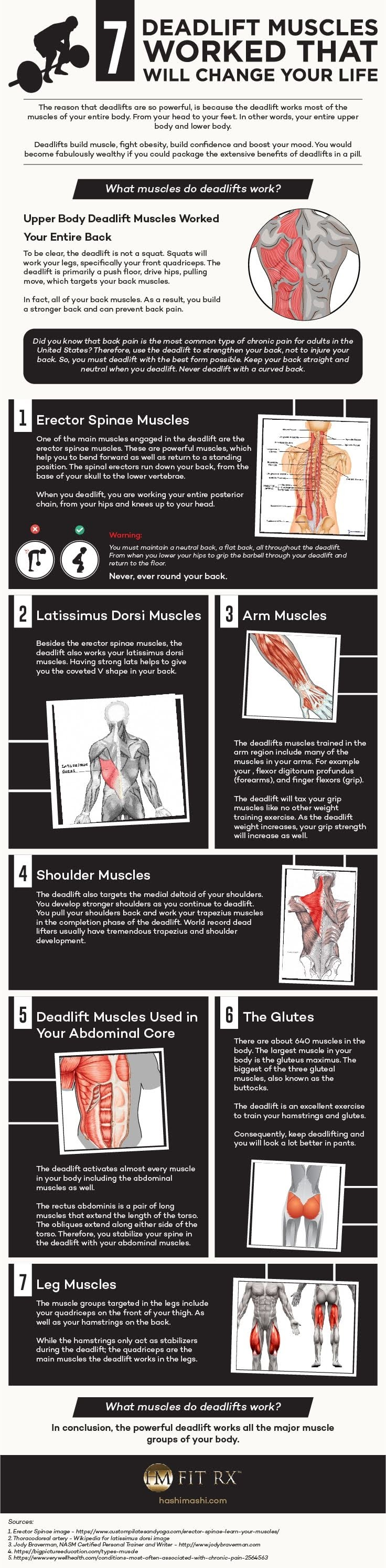 7 Deadlift Muscles Worked That Will Change Your Life #infographic