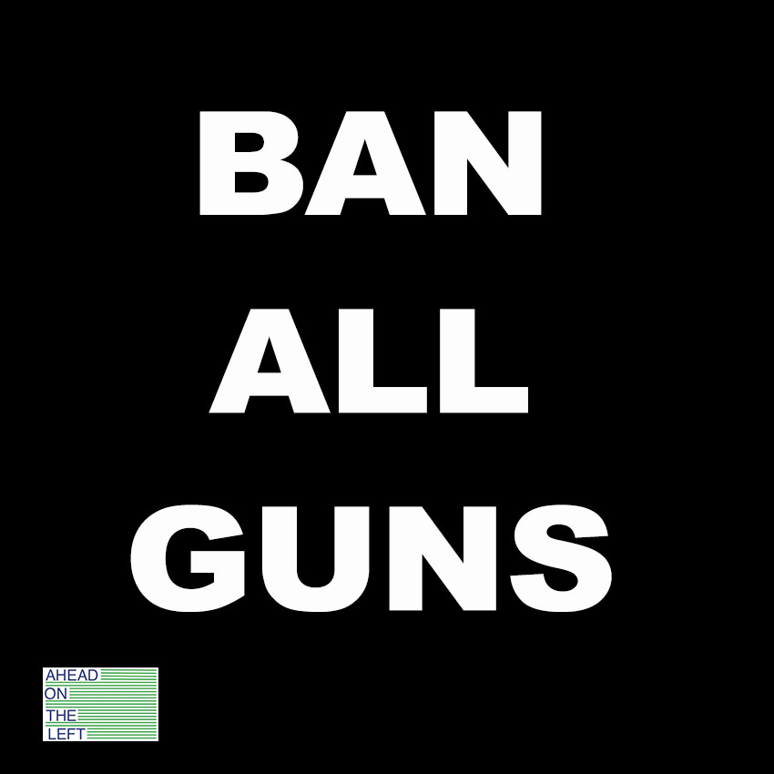 ahead on the left an explanation of ban all guns