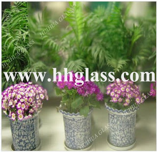 Glass for Windows and Doors