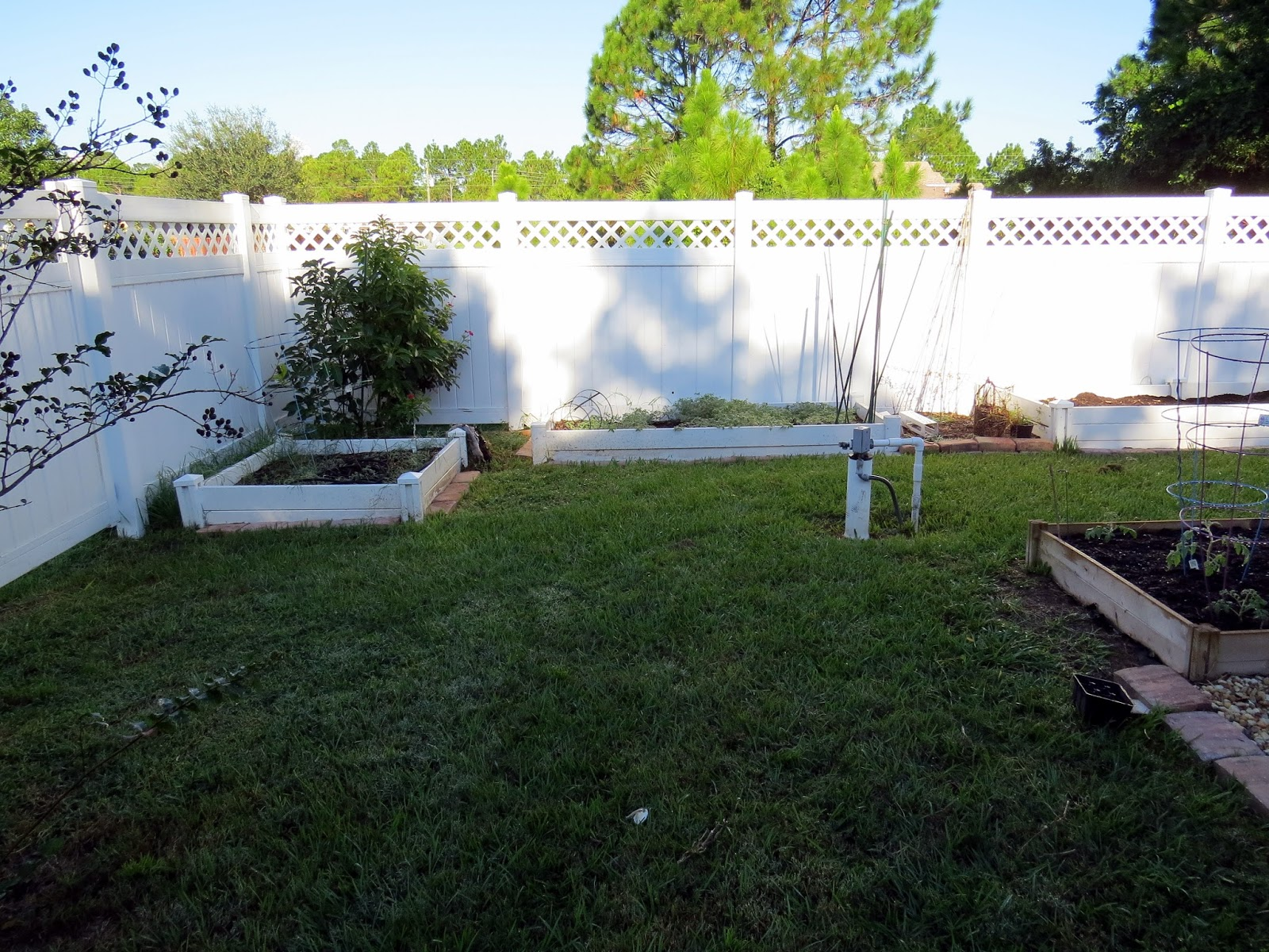 Islandscapes florida landscape design for Florida landscape design