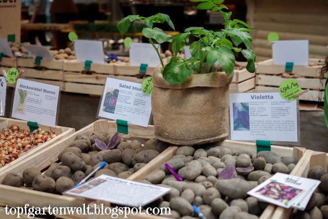 Gartenmesse Salzburg - Saatkartoffeln - Gartenblog Topfgartenwelt