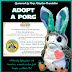 Porg Adoption Certificate - Star Wars Porgs