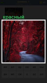 Тропинка проходит сквозь лес красного цвета, листья все красные