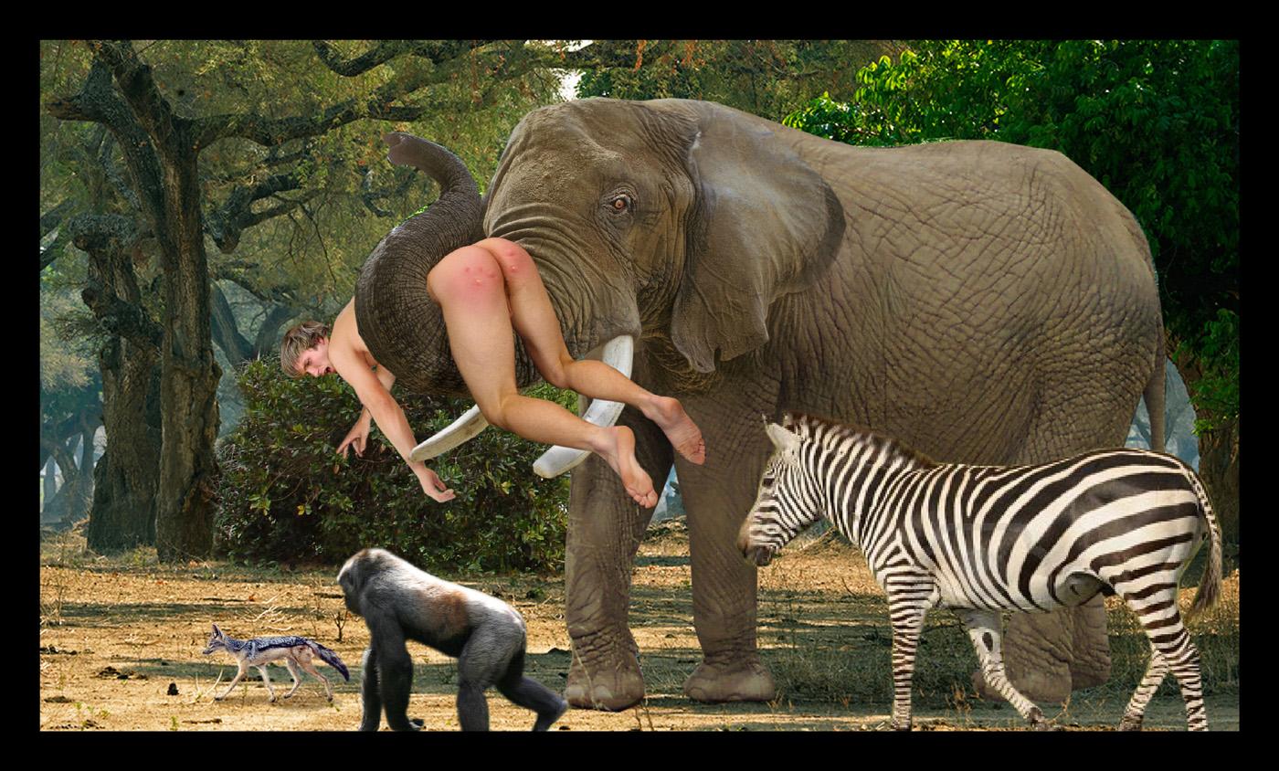 women-fucks-elephant-rear-view-of-teen-pussy