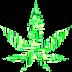 The Medicinal Value of Hemp, a Cannabis Sativa Species