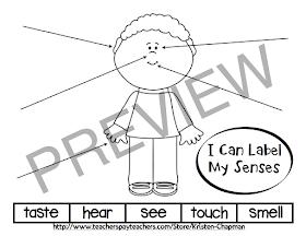 Early Childhood Scribbles: Five Senses Unit w/ FREEBIE!