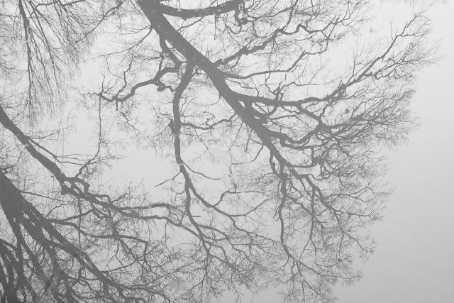 Koncepcyjna fotografia krajobrazu. Odbicia. fot. Łukasz Cyrus