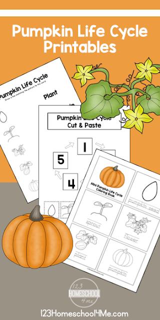 Free Life Cycle of a Pumpkin Printables