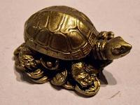 Teknős amulett