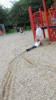 woodchips soft landing in playpark recreation area