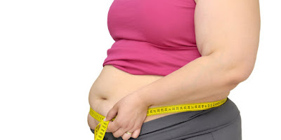 tubuh gemuk