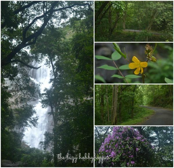 Tamilnadu Tourism Palaruvi Falls Milky Falls Aryankavu: The Lazy Hobbyhopper: Waterfalls