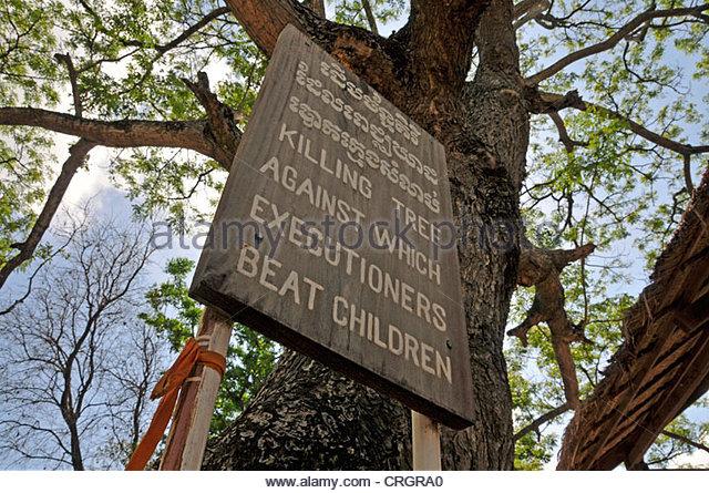 Pohon Chankiri