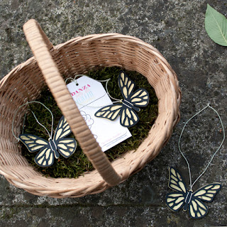 come fare farfalle con semi per metamorfosi