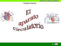 http://cplosangeles.juntaextremadura.net/web/edilim/tercer_ciclo/cmedio/las_funciones_vitales/la_funcion_de_nutricion/circulacion/el_aparato_circulatorio/el_aparato_circulatorio.html