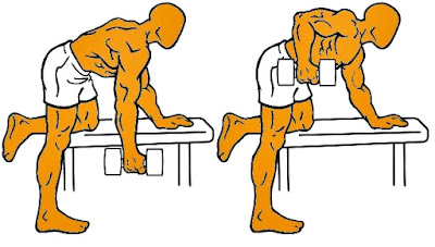 Remo mancuerna espalda ejercicio hombre rutina pesas