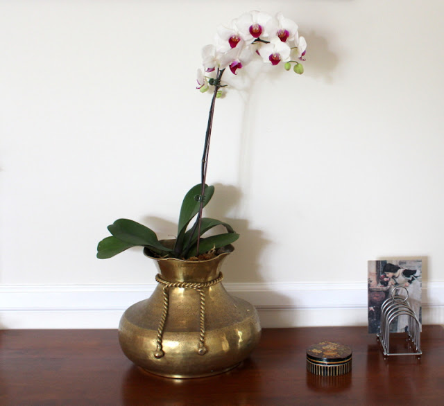 orchid in vintage brass  planter, vintage toast rack and bamboo box
