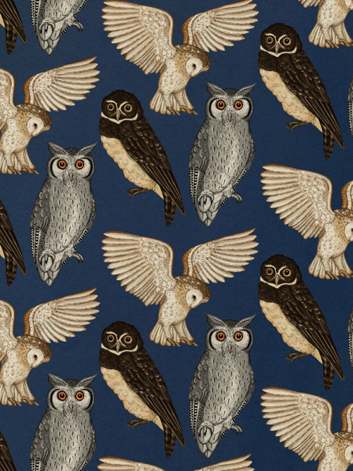 My Owl Barn Wallpapers Patterns And Prints By Katie Scott